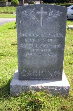 Caterina Carpino