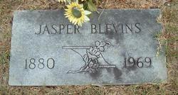 Jasper Blevins