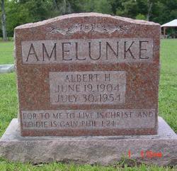 Albert Henry Amelunke