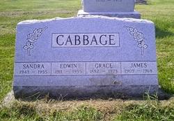 Edwin/Edward Thomason Cabbage