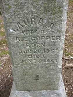 Laura A <i>Clutter</i> Copper