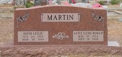 Alice Irene <i>Rowan</i> Martin