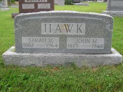 John Martin Hawk
