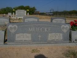 Fayrene <i>Balzen</i> Muecke