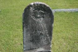 Martha L Hill