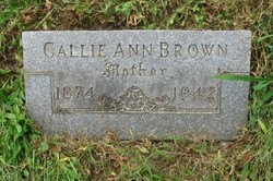 Callie Annie <i>Vineyard</i> Brown