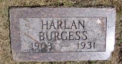 Harlan Burgess