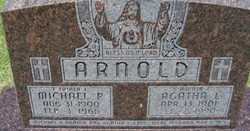 Michael P Arnold