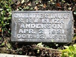 Charlotte Gertrude Lottie Anderson