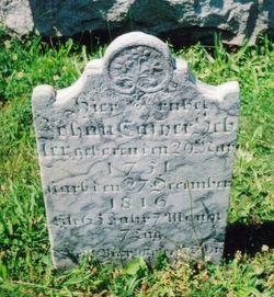 Johan Casper Hepler, Jr