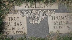 Tinamae <i>Beeler</i> Allen