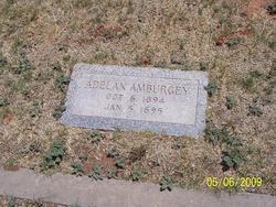 Adelan Amburgey