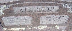 Mable <i>Carter</i> Atkinson