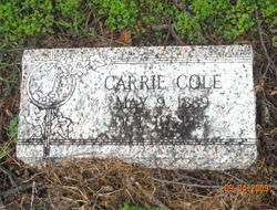 Carrie Cole