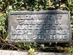 Eliza Mary <i>Spencer</i> Anderson