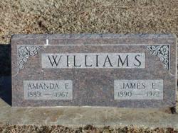 Amanda Elzierine Elzie <i>Smith</i> Williams