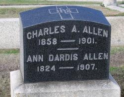 Ann Dardis Allen
