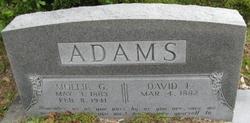 David Fair Adams