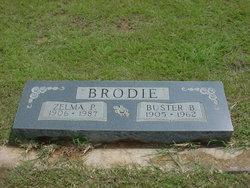 Buster Brownie Brodie