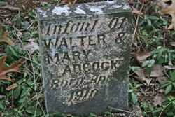 Infant of Walter & Mary Adcock