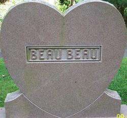 Beau Beau