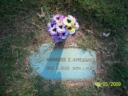 Ambrose E. Applegate