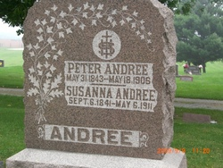 Peter Andree