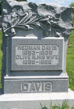 Olive N Ollie <i>Moreland</i> Davis
