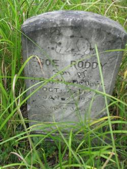 Joe Roddy Davis