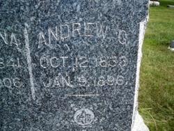 Andrew G Stenzel