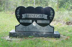 Dana S. Brinegar