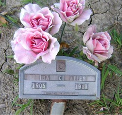 Ida C Alley