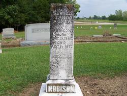 Janie <i>Agnew</i> Robison