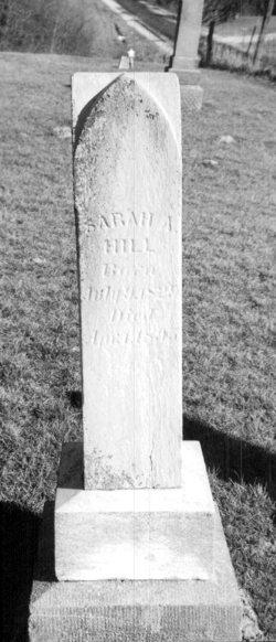 Sarah Ann <i>Haight</i> Hill