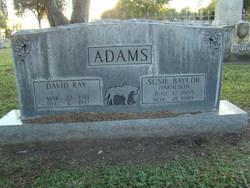 David Ray Adams