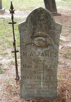 Mary Ann <i>Powell</i> James