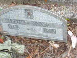 Adam Ervin Moore