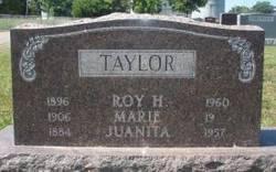 Roy Hershel Taylor