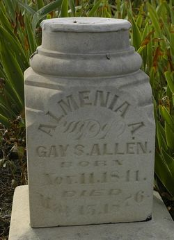 Almenia A. <i>Newell</i> Allen