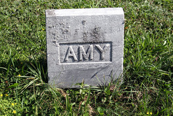 Amy Cobb