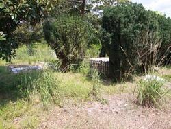 Ashe Cemetery