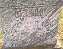 Elizabeth Ann <i>Davis</i> Brown
