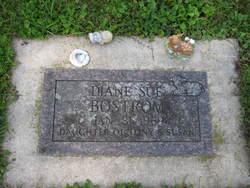 Diane Sue Bostrom