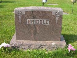 Lucy E. Briggle