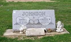 David L Johnson