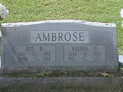 Brenda D Ambrose