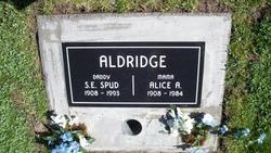 Alice Agnes Aldridge