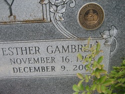 Esther Lee <i>Gambrell</i> DeViney