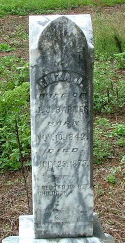 Eliza J. <i>Anderson</i> Barnes