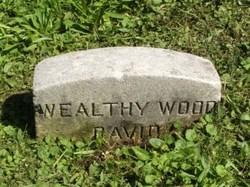 Wealthy Wood David
